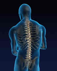 spine back orthopedic surgeon near me