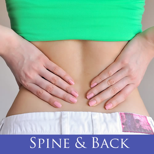 spine and back